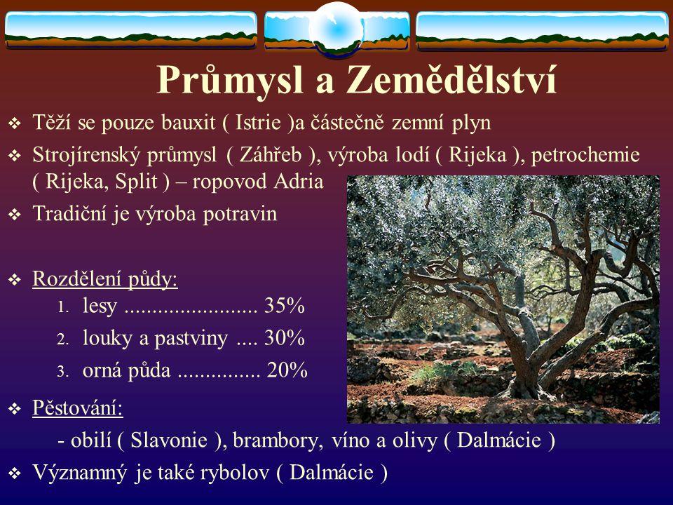 Průmysl a Zemědělství Těží se pouze bauxit ( Istrie )a částečně zemní plyn.