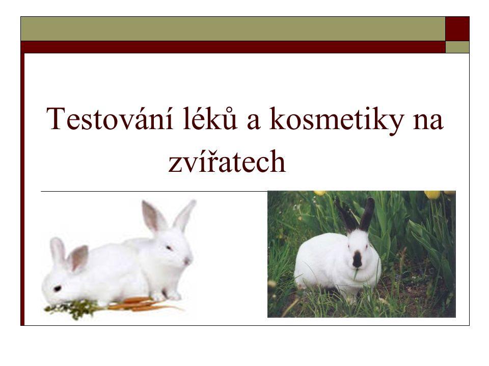 Testování léků a kosmetiky na zvířatech