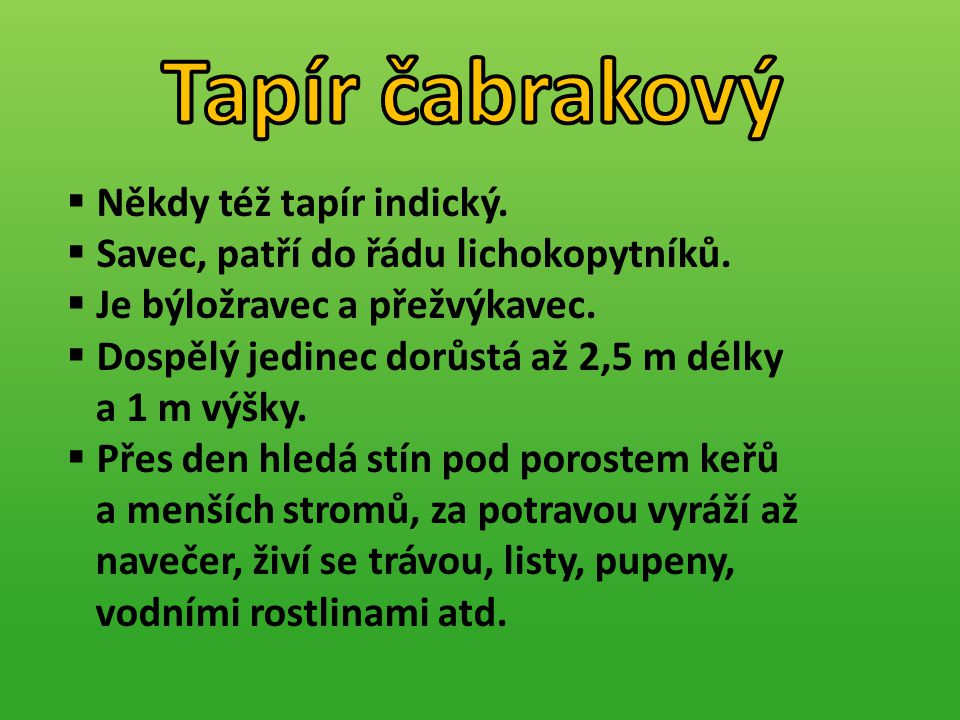 Tapír čabrakový Někdy též tapír indický.