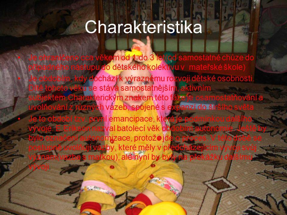 Charakteristika Je ohraničeno cca věkem od 1 do 3 let(od samostatné chůze do případného nástupu do dětského kolektivu v mateřské škole)