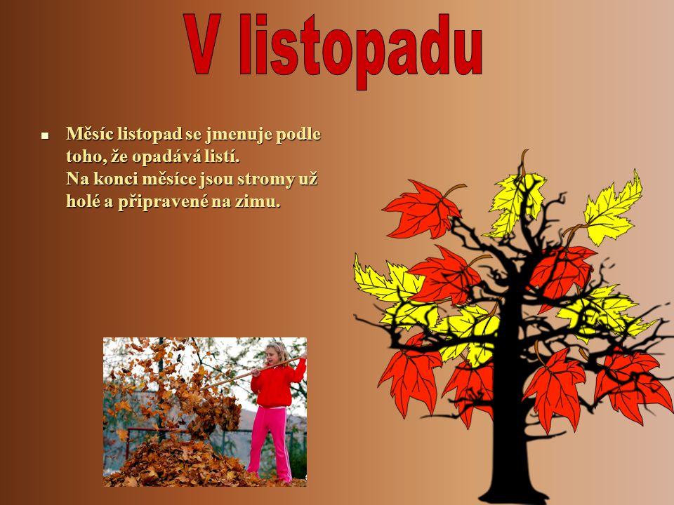 V listopadu Měsíc listopad se jmenuje podle toho, že opadává listí.