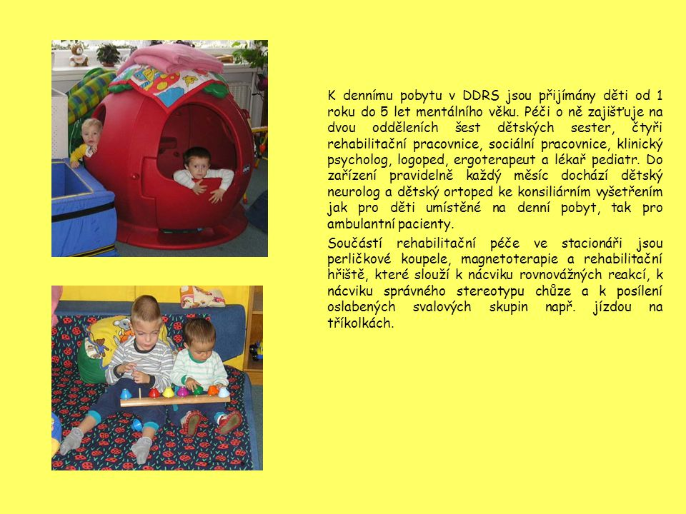 K dennímu pobytu v DDRS jsou přijímány děti od 1 roku do 5 let mentálního věku. Péči o ně zajišťuje na dvou odděleních šest dětských sester, čtyři rehabilitační pracovnice, sociální pracovnice, klinický psycholog, logoped, ergoterapeut a lékař pediatr. Do zařízení pravidelně každý měsíc dochází dětský neurolog a dětský ortoped ke konsiliárním vyšetřením jak pro děti umístěné na denní pobyt, tak pro ambulantní pacienty.