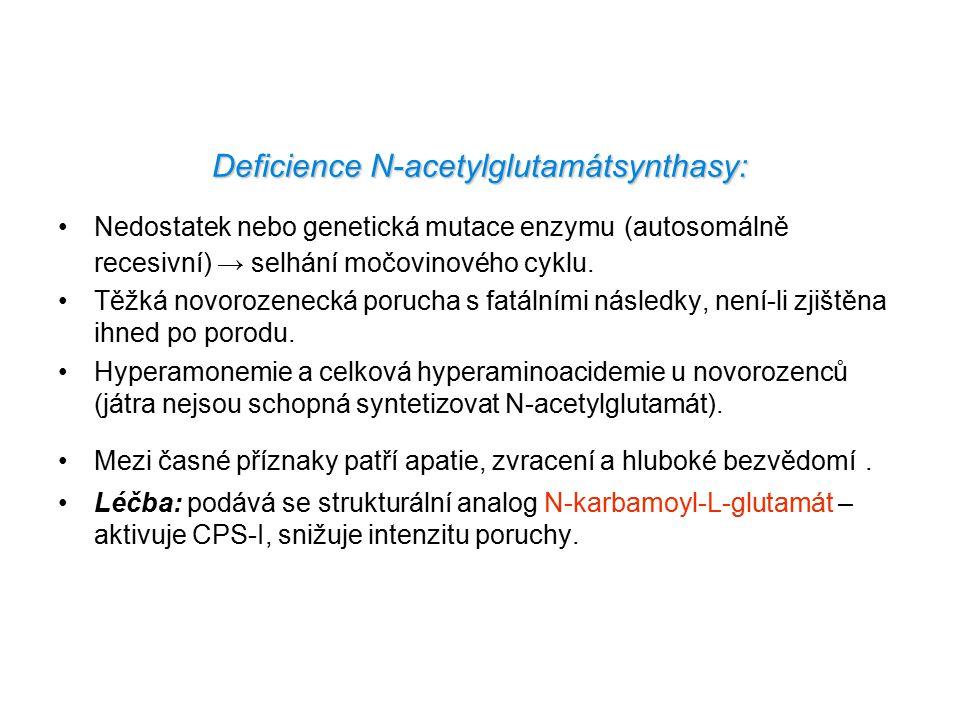 Deficience N-acetylglutamátsynthasy: