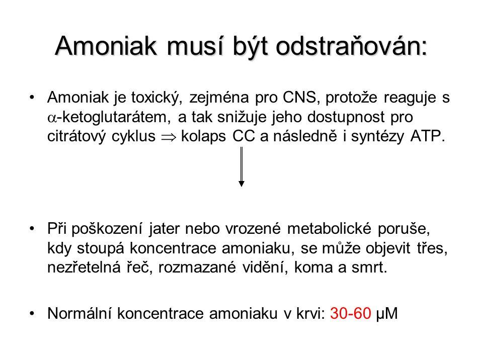 Amoniak musí být odstraňován: