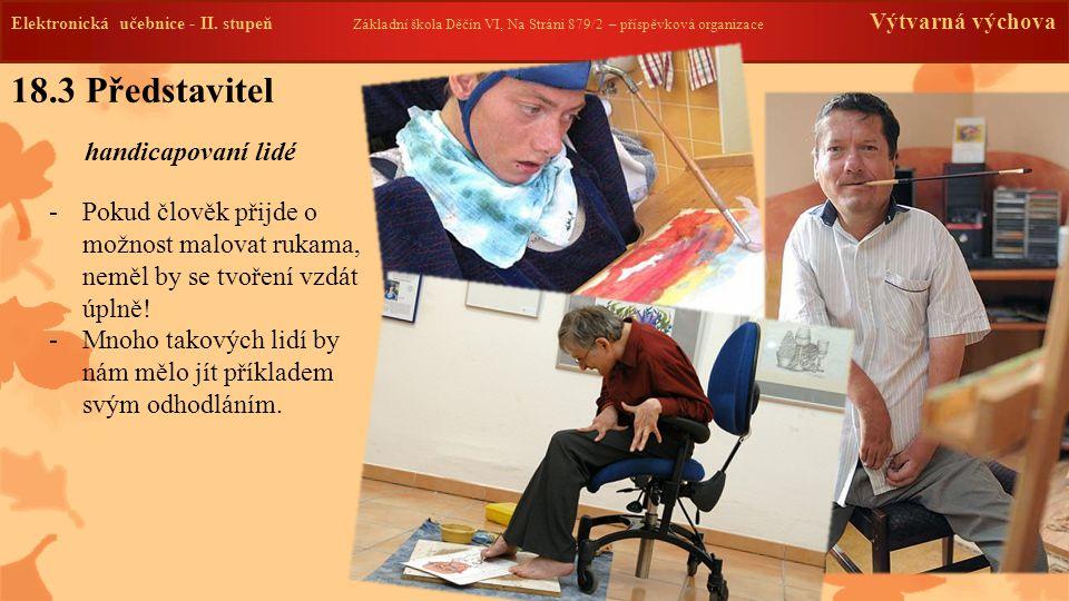 18.3 Představitel handicapovaní lidé