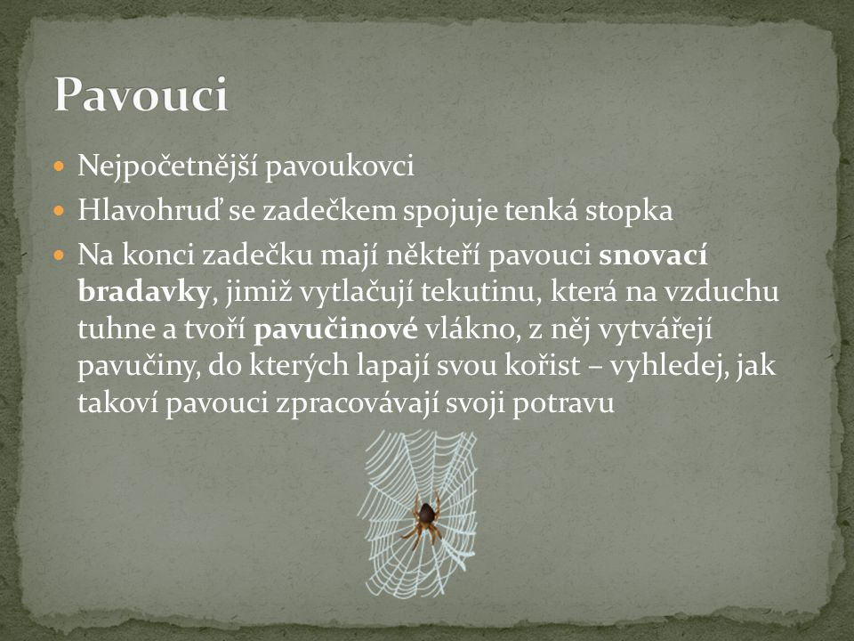 Pavouci Nejpočetnější pavoukovci