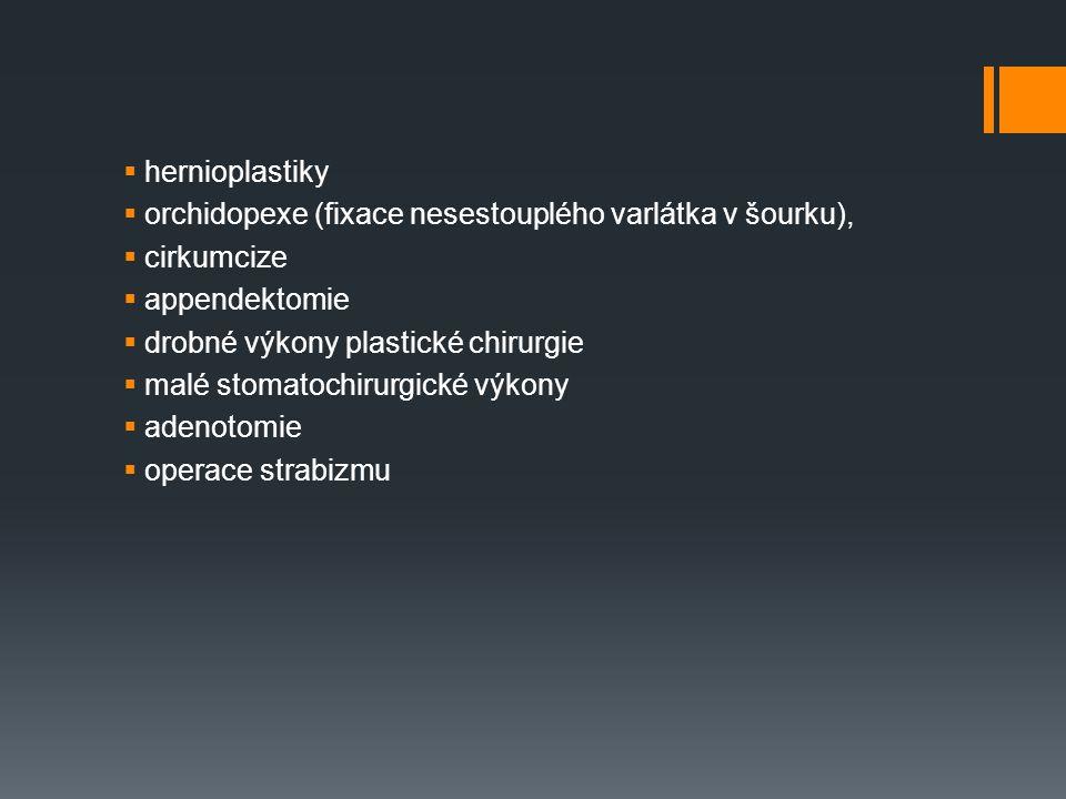 hernioplastiky orchidopexe (fixace nesestouplého varlátka v šourku), cirkumcize. appendektomie. drobné výkony plastické chirurgie.