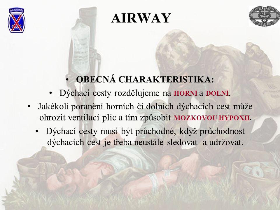 AIRWAY OBECNÁ CHARAKTERISTIKA: