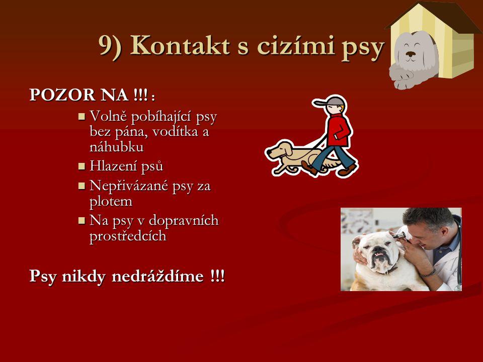 9) Kontakt s cizími psy POZOR NA !!! : Psy nikdy nedráždíme !!!