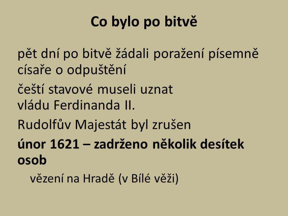 Co bylo po bitvě pět dní po bitvě žádali poražení písemně císaře o odpuštění. čeští stavové museli uznat vládu Ferdinanda II.