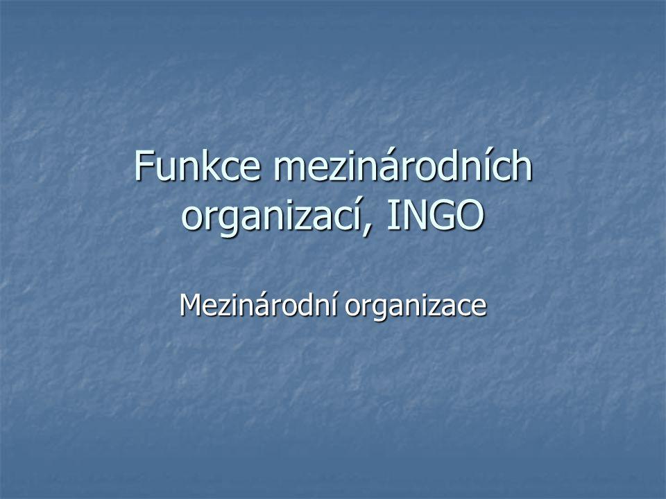 Funkce mezinárodních organizací, INGO