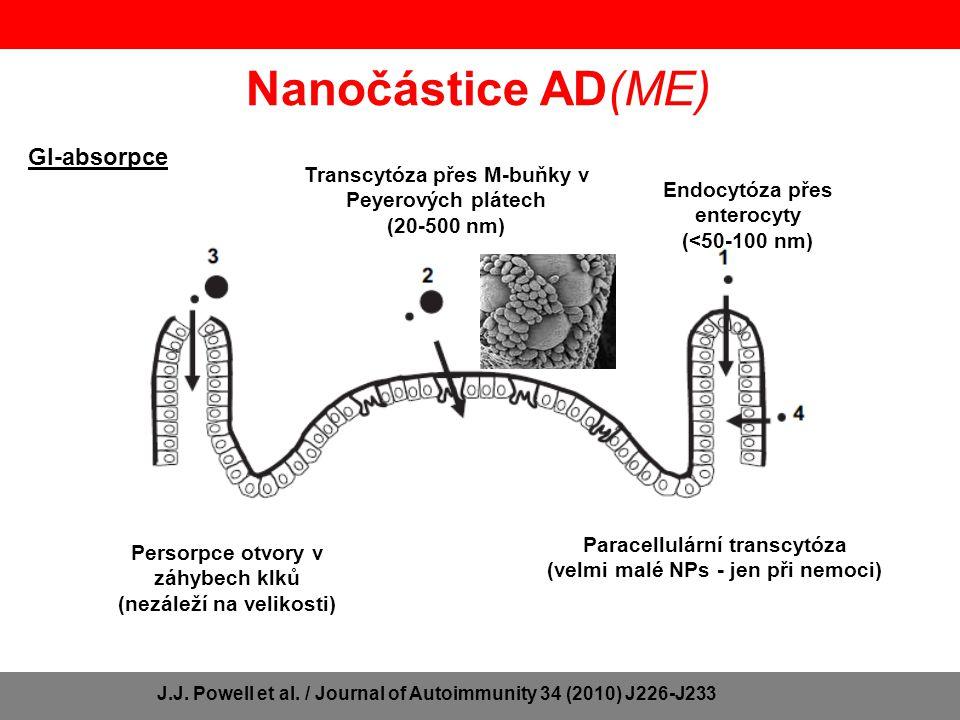 Nanočástice AD(ME) GI-absorpce