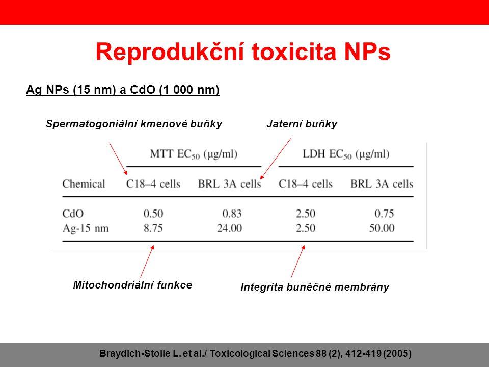 Reprodukční toxicita NPs