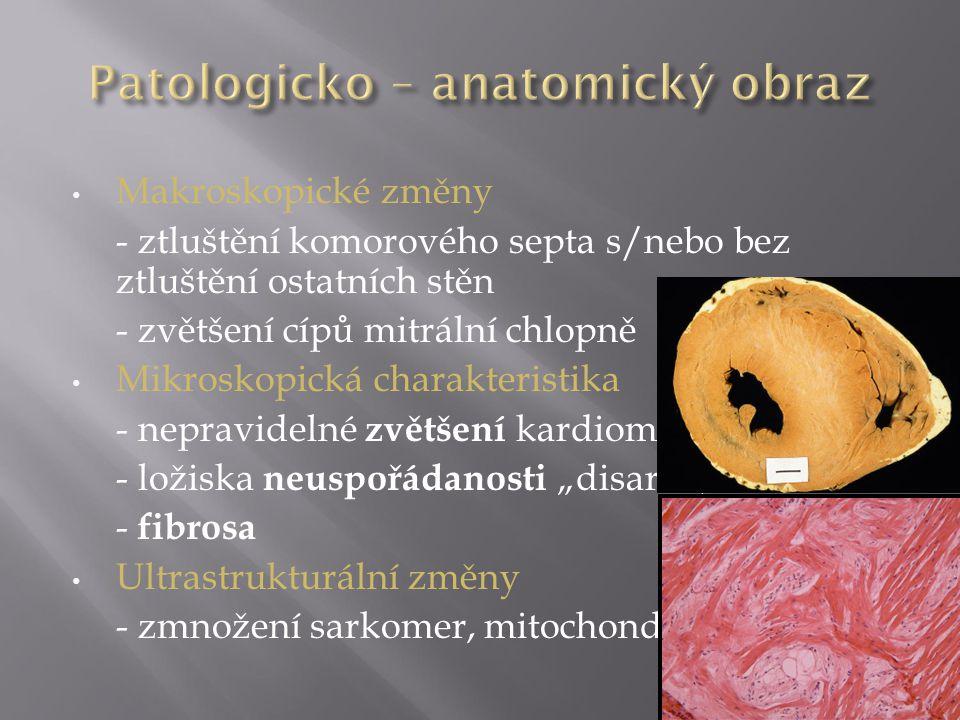 Patologicko – anatomický obraz