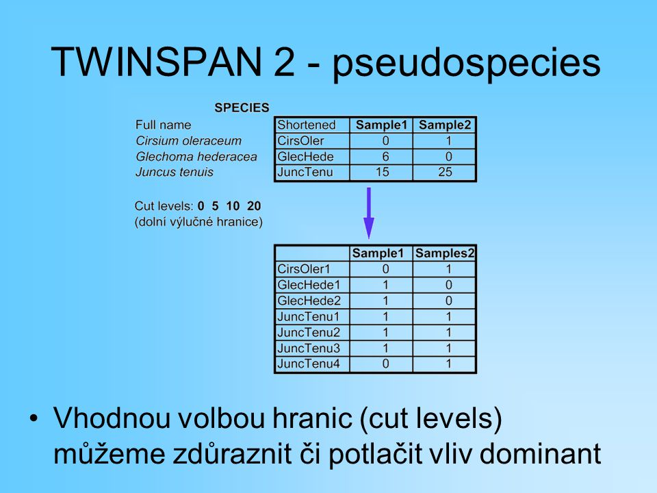TWINSPAN 2 - pseudospecies