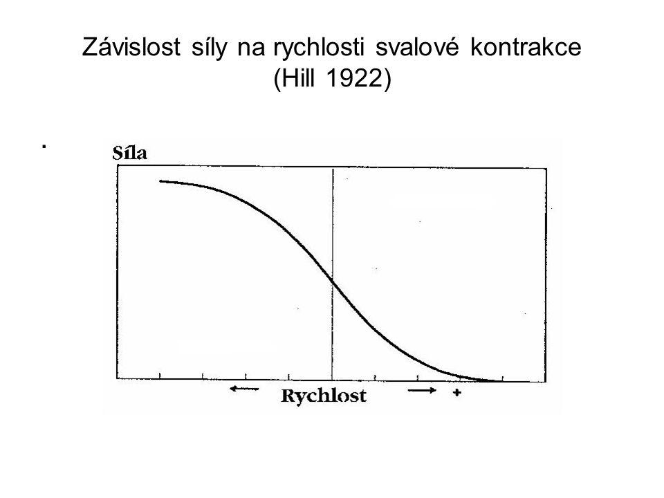 Závislost síly na rychlosti svalové kontrakce (Hill 1922)