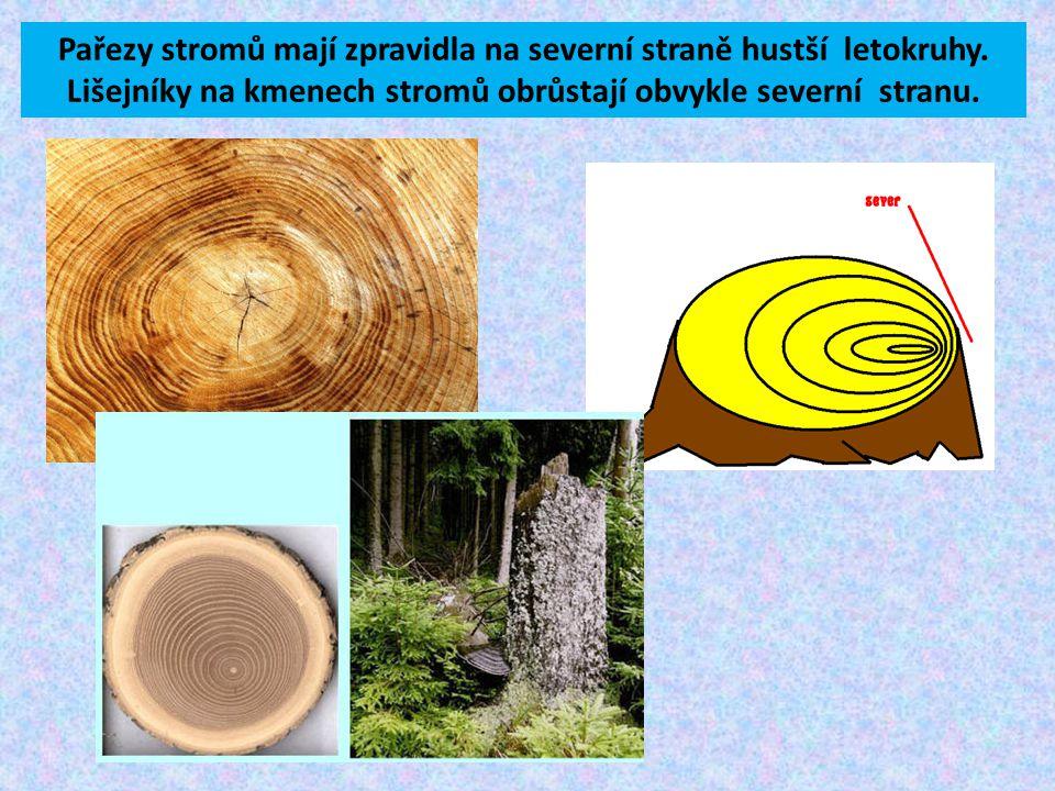 Pařezy stromů mají zpravidla na severní straně hustší letokruhy.