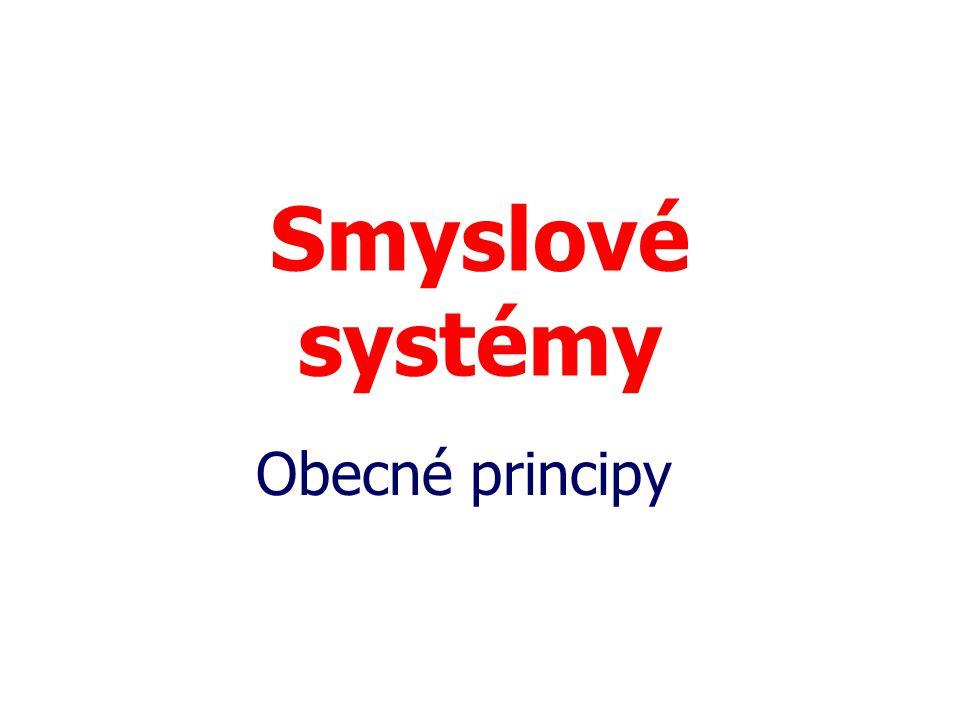 Smyslové systémy Obecné principy