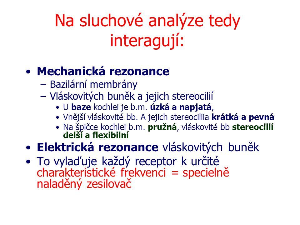 Na sluchové analýze tedy interagují: