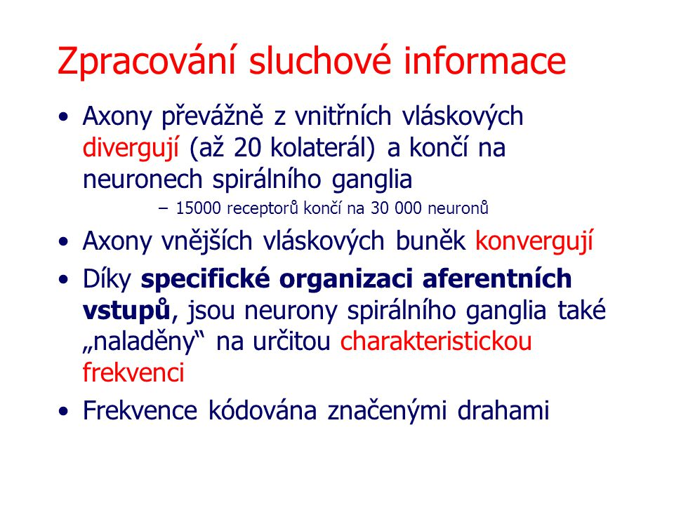 Zpracování sluchové informace