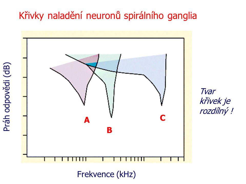Křivky naladění neuronů spirálního ganglia