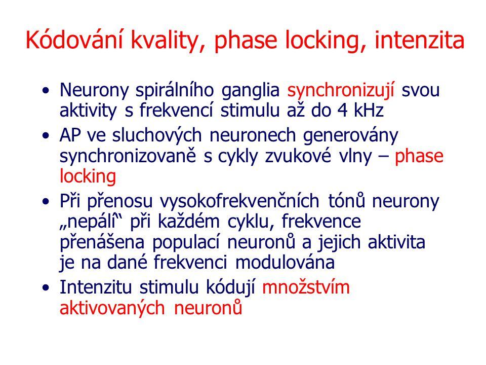 Kódování kvality, phase locking, intenzita