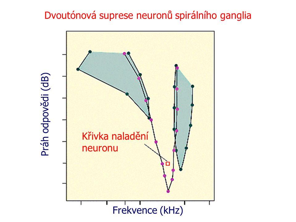Dvoutónová suprese neuronů spirálního ganglia