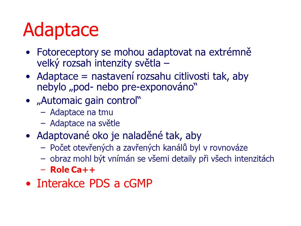 Adaptace Interakce PDS a cGMP