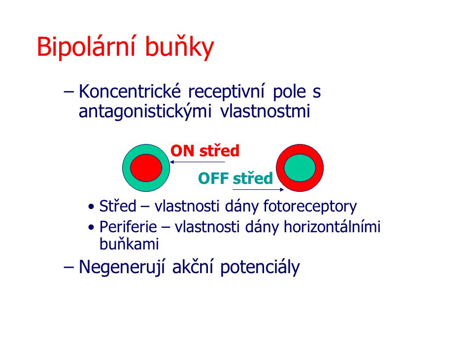 Bipolární buňky Koncentrické receptivní pole s antagonistickými vlastnostmi. Střed – vlastnosti dány fotoreceptory.