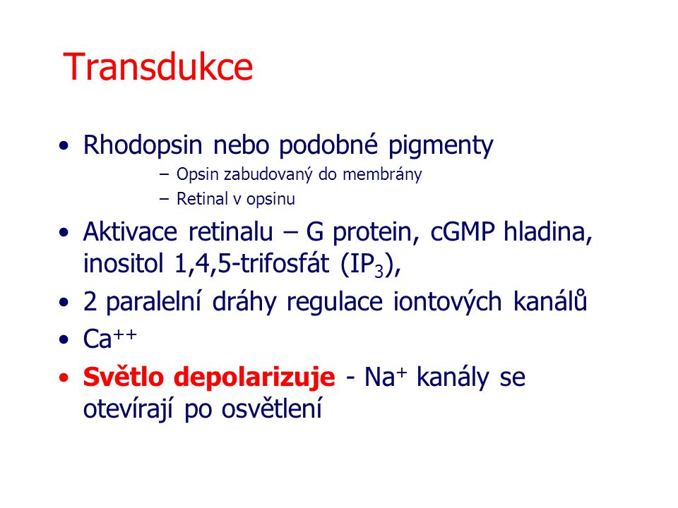 Transdukce Rhodopsin nebo podobné pigmenty