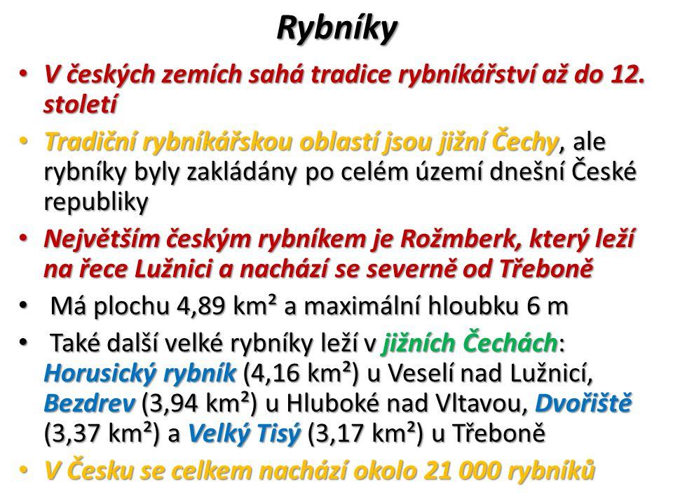 Rybníky V českých zemích sahá tradice rybníkářství až do 12. století