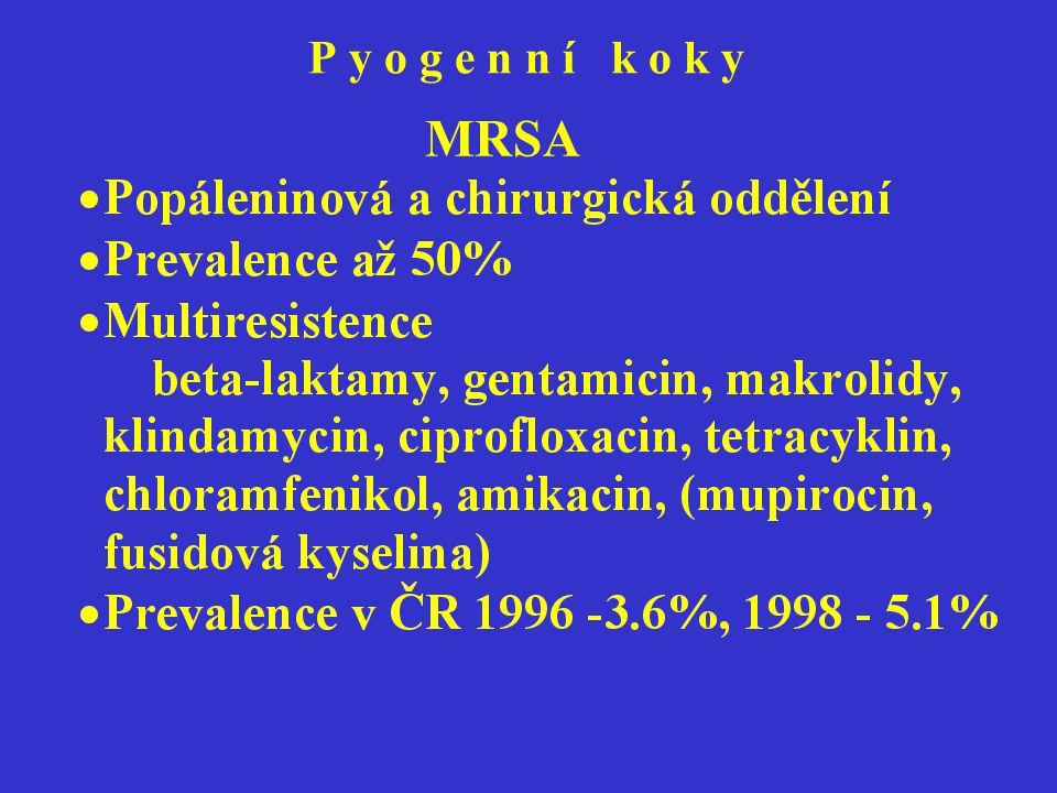 P y o g e n n í k o k y MRSA