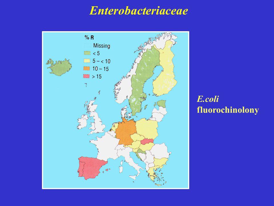 Enterobacteriaceae E.coli fluorochinolony