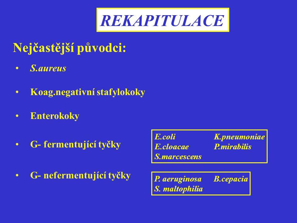 REKAPITULACE Nejčastější původci: S.aureus Koag.negativní stafylokoky