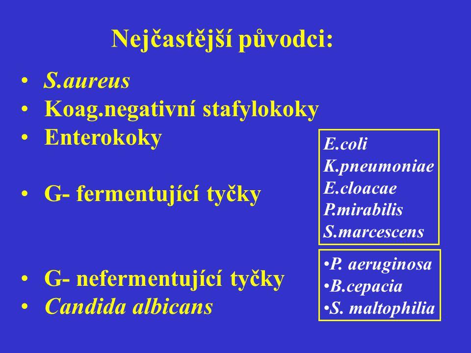 Nejčastější původci: S.aureus Koag.negativní stafylokoky Enterokoky