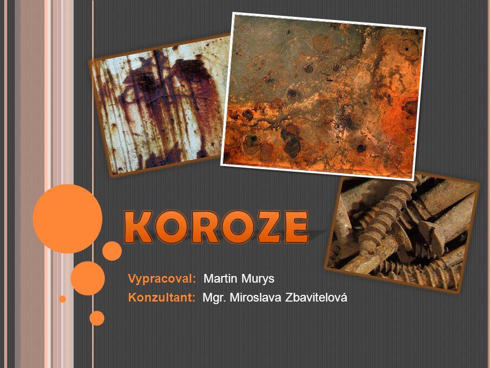 Vypracoval: Martin Murys Konzultant: Mgr. Miroslava Zbavitelová