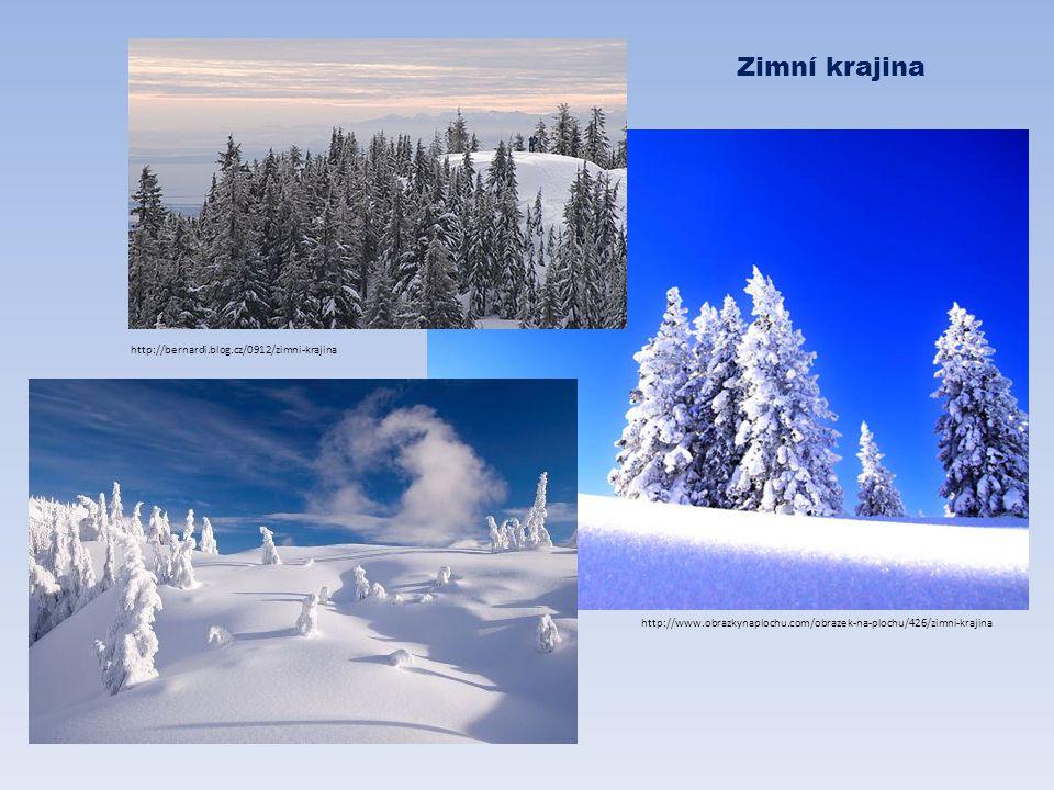 Zimní krajina http://bernardi.blog.cz/0912/zimni-krajina