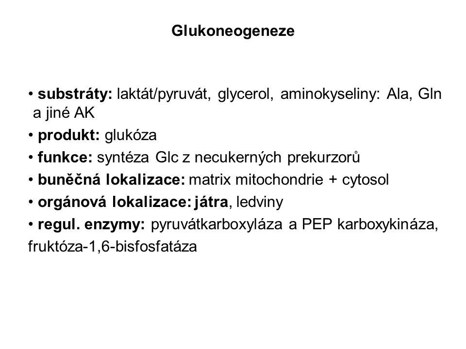 Glukoneogeneze substráty: laktát/pyruvát, glycerol, aminokyseliny: Ala, Gln a jiné AK. produkt: glukóza.