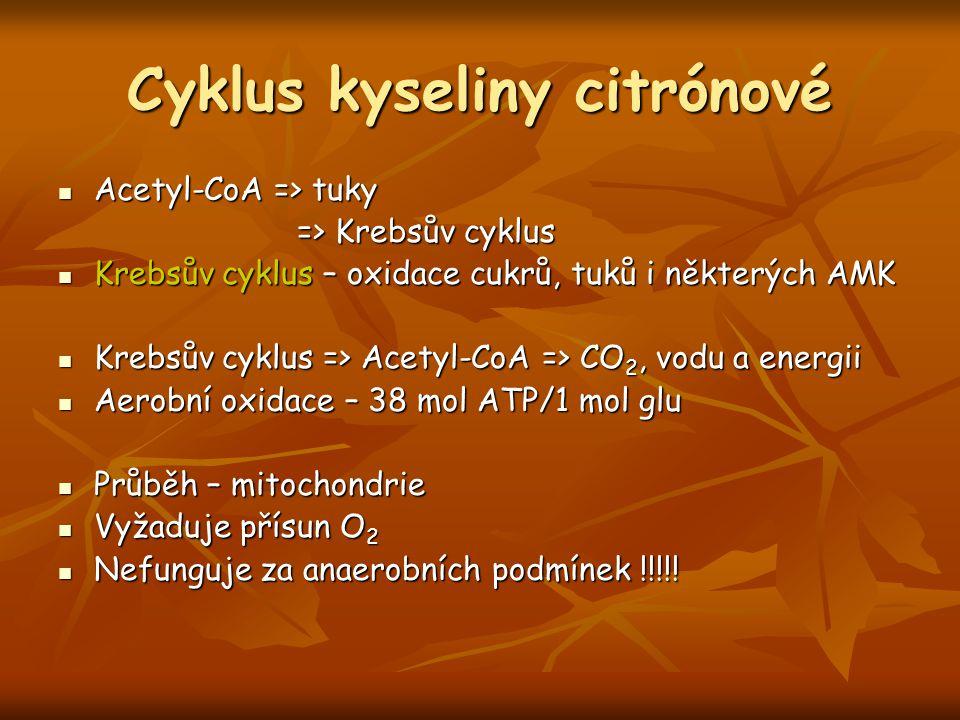 Cyklus kyseliny citrónové