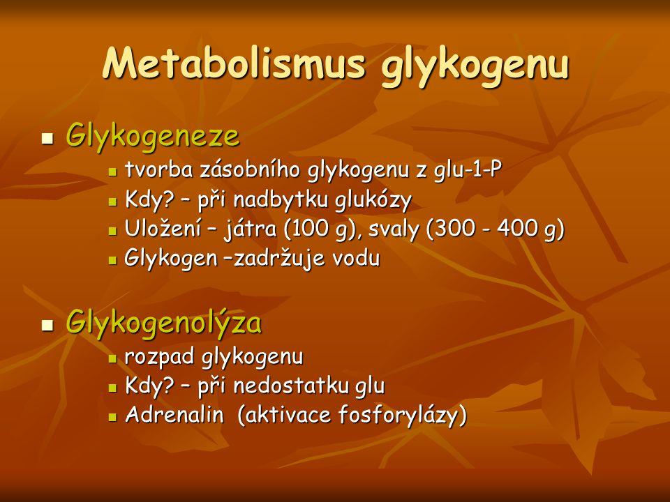 Metabolismus glykogenu