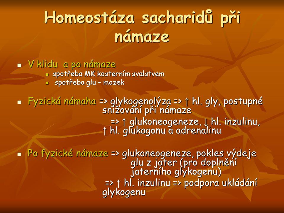 Homeostáza sacharidů při námaze