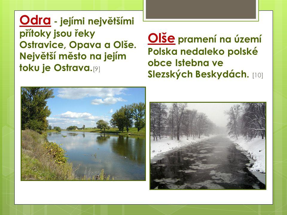 Odra - jejími největšími přítoky jsou řeky Ostravice, Opava a Olše