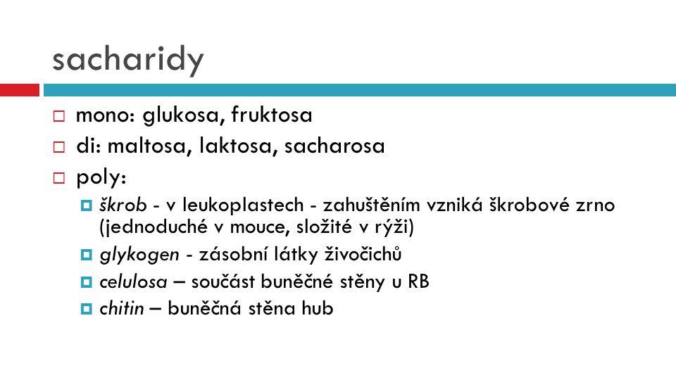 sacharidy mono: glukosa, fruktosa di: maltosa, laktosa, sacharosa