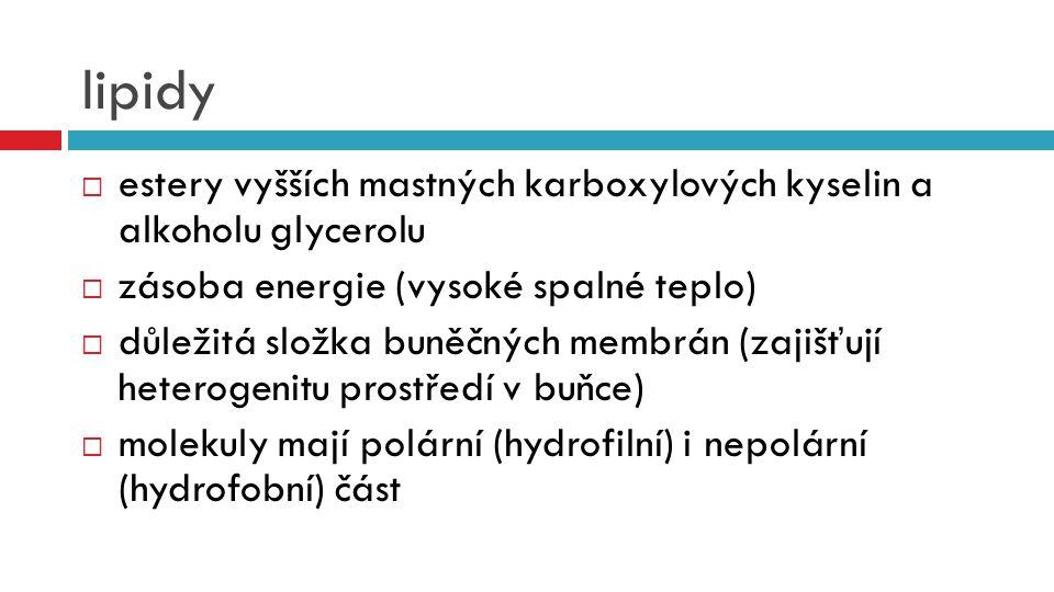 lipidy estery vyšších mastných karboxylových kyselin a alkoholu glycerolu. zásoba energie (vysoké spalné teplo)