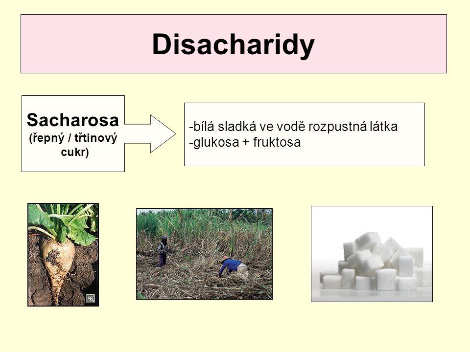 Disacharidy Sacharosa bílá sladká ve vodě rozpustná látka