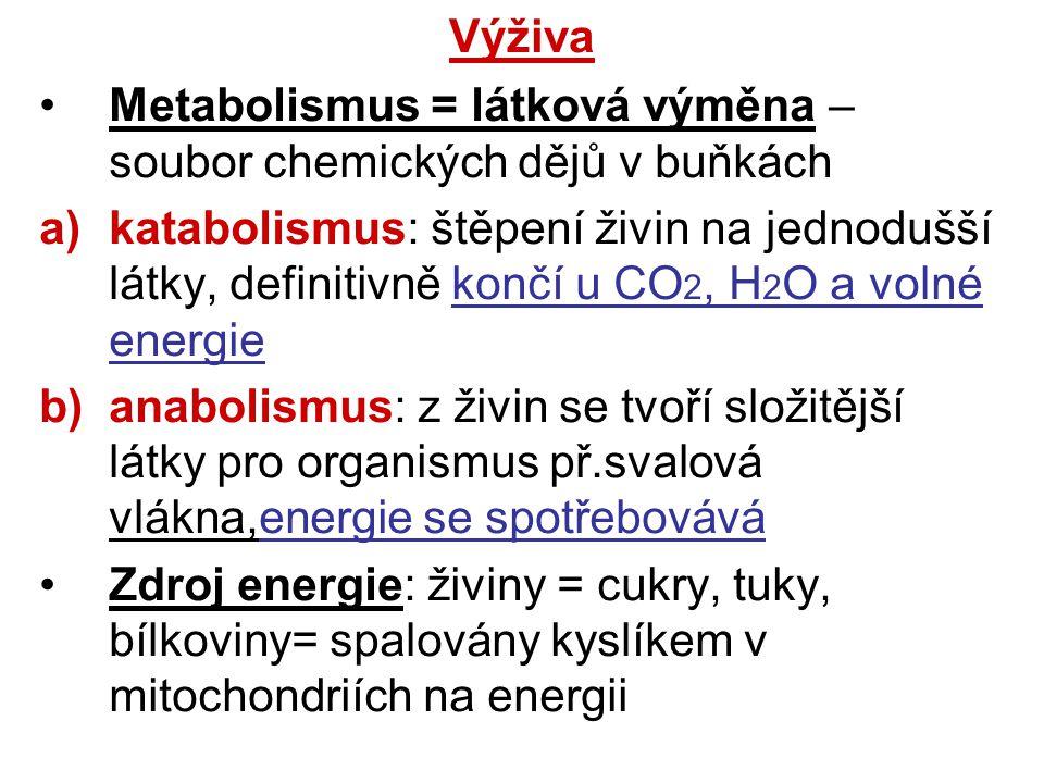 Výživa Metabolismus = látková výměna – soubor chemických dějů v buňkách.