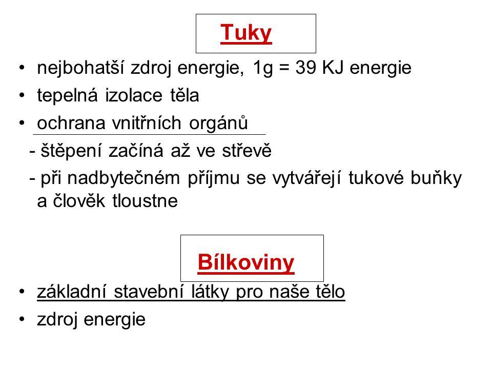 Tuky Bílkoviny nejbohatší zdroj energie, 1g = 39 KJ energie