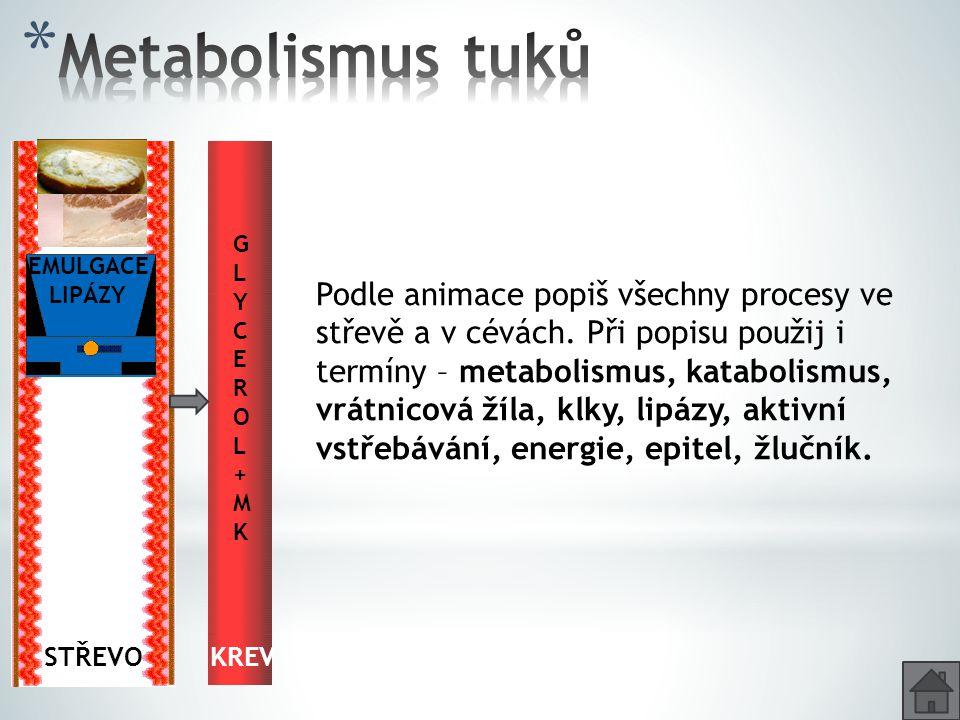 Metabolismus tuků GLYCEROL + M. K. EMULGACE. LIPÁZY. Glycerol + MK. Emulgace. Glycerol + MK.