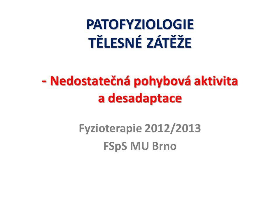 Fyzioterapie 2012/2013 FSpS MU Brno