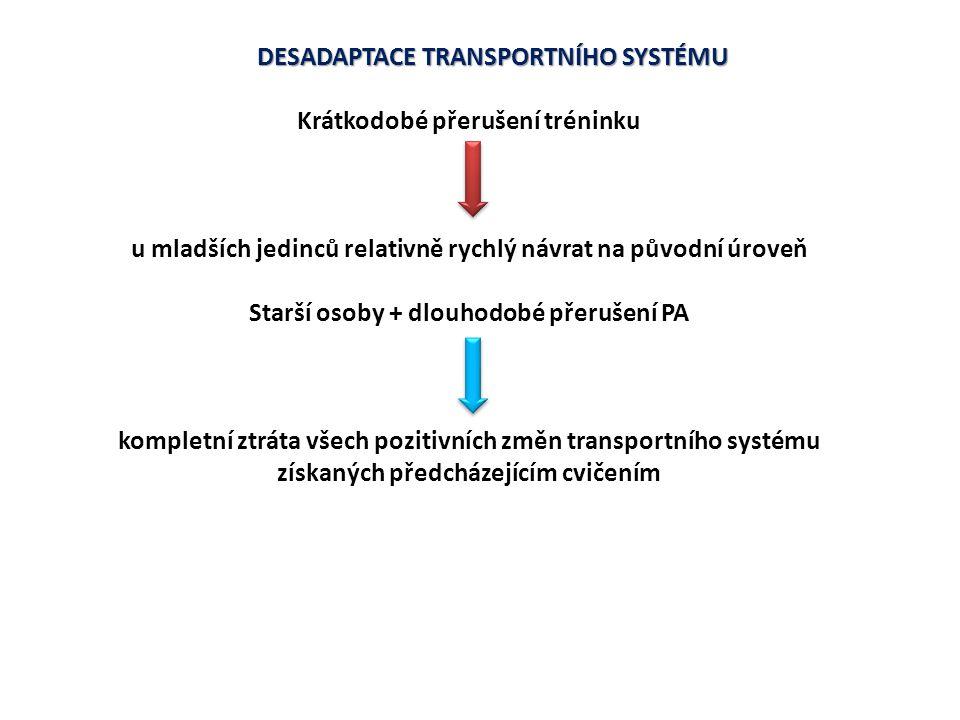 DESADAPTACE TRANSPORTNÍHO SYSTÉMU Krátkodobé přerušení tréninku